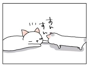 猫と一緒-20110908_08
