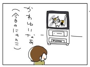 猫と一緒-20100517_09