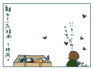 猫と一緒-20090120-12