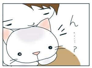 猫と一緒-20100123_05