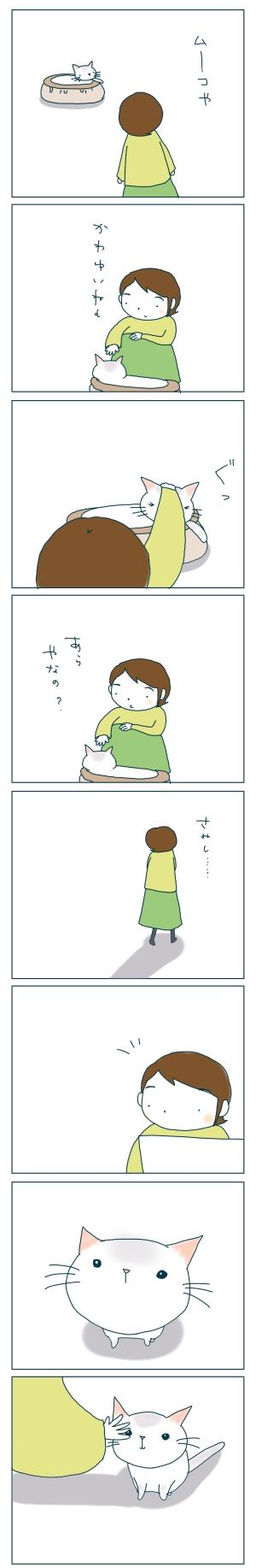 猫と一緒-20081218-01