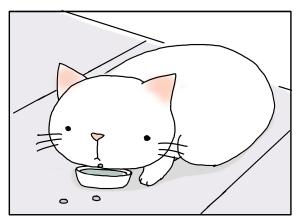 猫と一緒-20100217_14