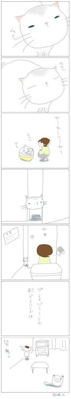 猫と一緒-20080326