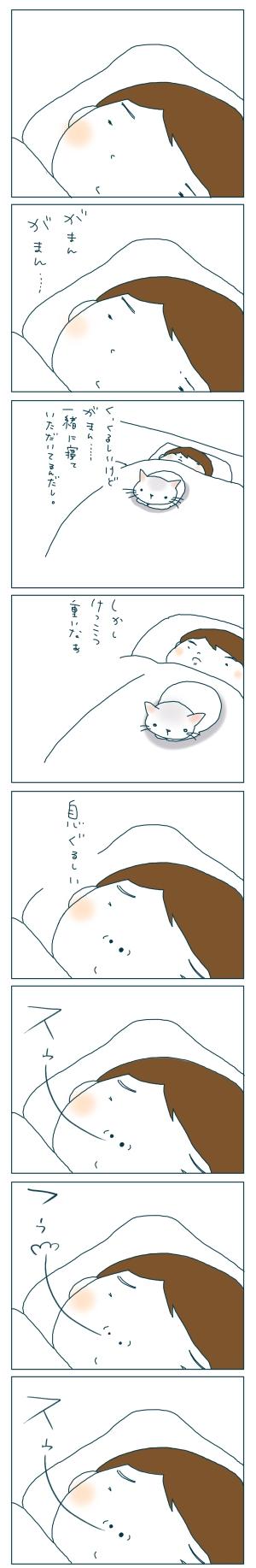 猫と一緒-20081130-01