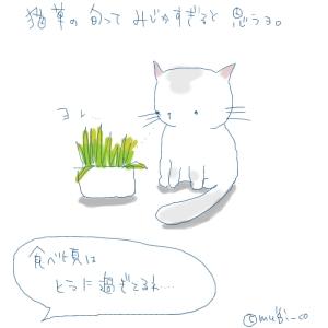 猫と一緒-20061214