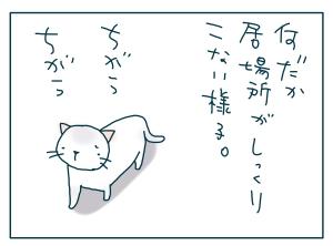 猫と一緒-20090718_12