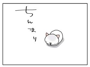 猫と一緒-20100927_01