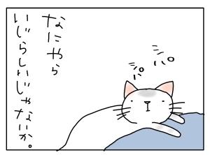猫と一緒-20130606_08