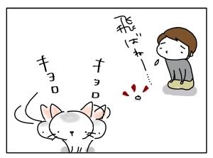 猫と一緒-20111026_11