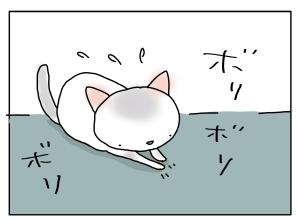 猫と一緒-20110805_03