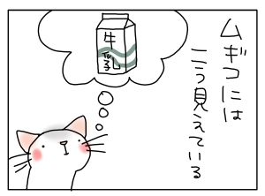 猫と一緒-20121203_07