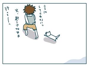 猫と一緒-20090130-15