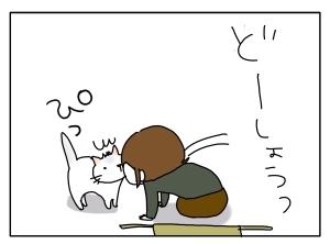 猫と一緒-20100226_13