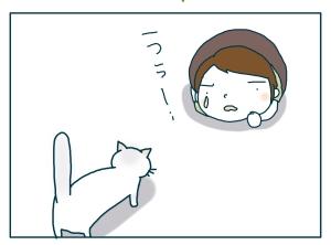 猫と一緒-20090831_14