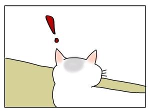 猫と一緒-20120127_05