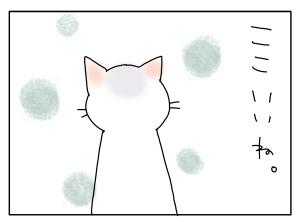 猫と一緒-20100723_03