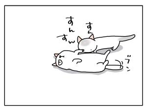 猫と一緒-20110908_10