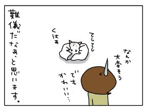 20171114_03