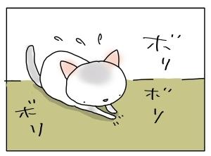 猫と一緒-20110805_07