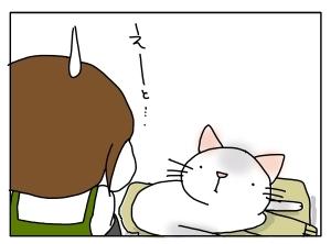 猫と一緒-20120505_03