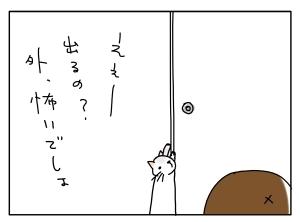 猫と一緒-20100531_11