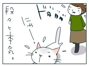 猫と一緒-20100119_04