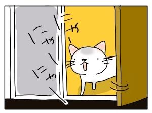 猫と一緒-20110915_03