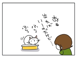猫と一緒-20111115_03