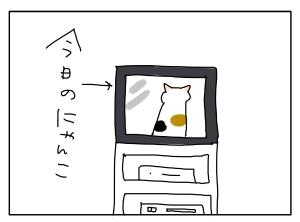 猫と一緒-20100517_01