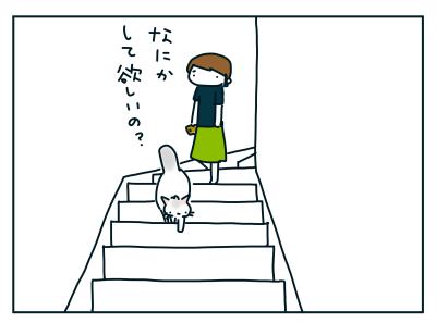 20190814_08