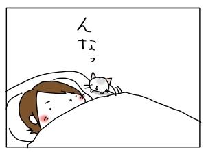 猫と一緒-20121115_04