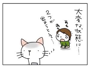 猫と一緒-20111115_06