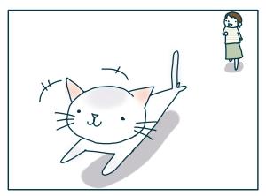 猫と一緒-20090527_15