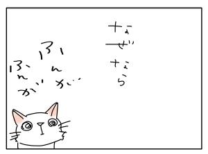 猫と一緒-20100628_04