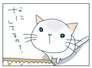 猫と一緒-20090529_08