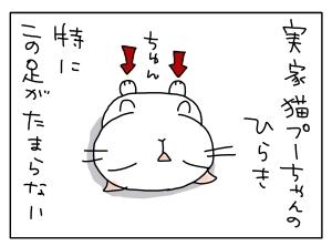 猫と一緒-20111104_02