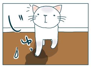 猫と一緒-20090716_08