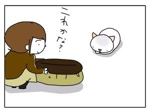 猫と一緒-20100927_08