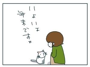 猫と一緒-20091230_01