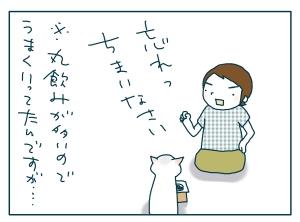 猫と一緒-20090821_14