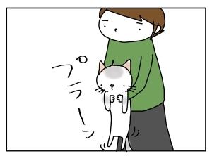 猫と一緒-20120127_01
