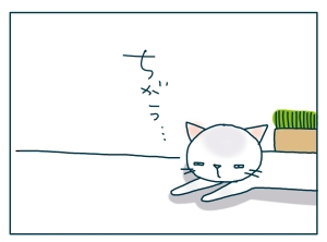 猫と一緒-20090718_03