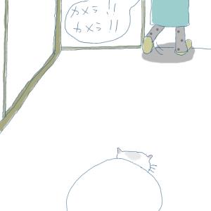 猫と一緒-20080131