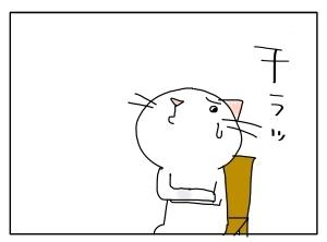 猫と一緒-20101115_11