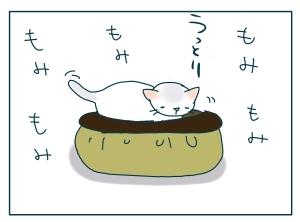 猫と一緒-20091114_07
