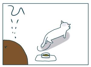 猫と一緒-20090709_04