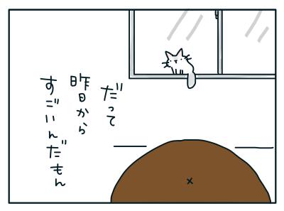 20190223_03