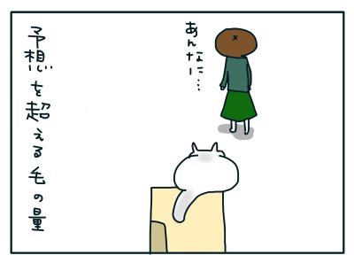 20190225_06