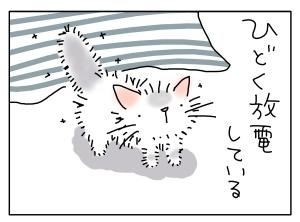 猫と一緒-20130205_03