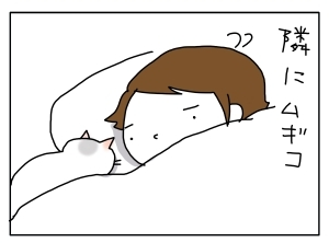 猫と一緒-20131204_02